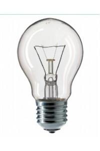 Лампочка накаливания Philips A55 100W 230V E27 CL.1CT/12X10F PH