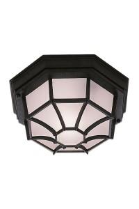 Потолочный светильник Searchlight Outdoor 2942BK