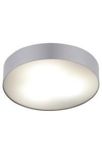 Настенно-Потолочный светильник Nowodvorski ARENA SILVER 6770
