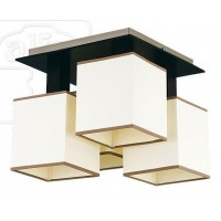 Потолочный светильник 10335 Ewa Alfa