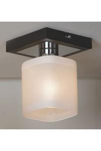 Потолочный светильник Lussole LSL-9007-01