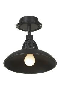 Потолочный светильник Lussole LSN-1077-01