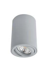 Точечный накладной светильник Artelamp SENTRY A1560PL-1GY