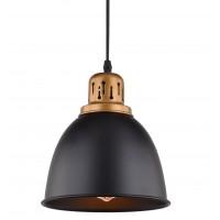 Подвесной светильник Artelamp EURICA A4245SP-1BK