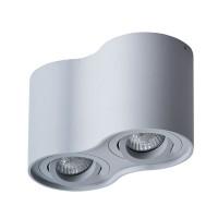 Потолочный светильник Arte Lamp Falcon A5645PL-2GY