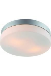 Потолочный светильник Artelamp AQUA A3211PL-2SI
