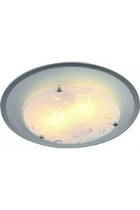 Потолочный светильник Artelamp ARIEL A4806PL-2CC