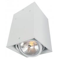 Потолочный светильник Artelamp CARDANI A5936PL-1WH