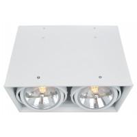 Потолочный светильник Artelamp CARDANI A5936PL-2WH