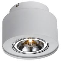 Потолочный светильник Artelamp CLIFF A5643PL-1WH