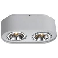 Потолочный светильник Artelamp CLIFF A5643PL-2WH