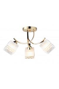 Потолочный светильник Artelamp MODELLO A6119PL-3GO