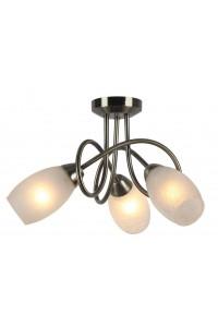 Потолочный светильник Artelamp MUTTI A8616PL-3AB