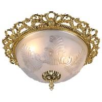 Потолочный светильник Artelamp PIATTI A8002PL-2GO