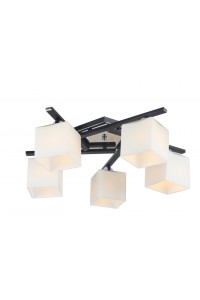 Потолочный светильник Artelamp VISUALE A8165PL-5BK