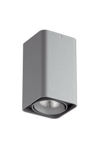 Точечный накладной светильник Lightstar MONOCCO 212539
