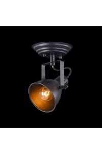 Настенно-потолочный светильник Freya Ibbi FR4276-CW-01-B