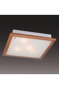 Настенно-потолочный светильник SONEX FEROLA 3242
