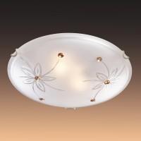 Настенно-потолочный светильник SONEX FLORET 349