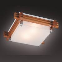 Настенно-потолочный светильник SONEX TRIAL 2241