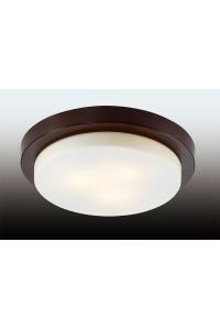 Настенно-потолочный светильник влагозащищённый ODEON LIGHT HOLGER 2744/3C